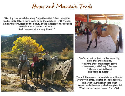 Horses and Mountain Trails