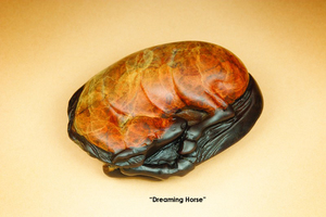 Dreaming Horse